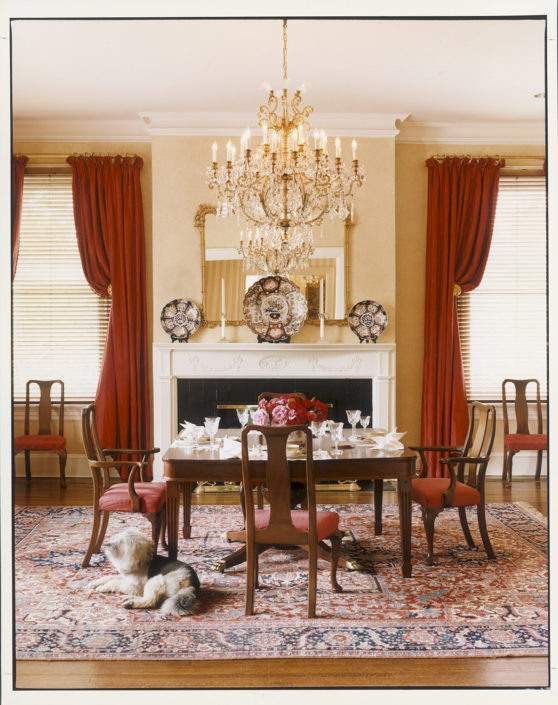 ALBERT THE GREAT. Daisy, one of the Gores' canine family members, relaxes in the first-floor dining room of the residence designed by Albert Hadley. Number One Observatory Circle, the official home and residence of the Vice President of the United States. (Photographer: Oberto Gili). Text credit: Charles Denyer.