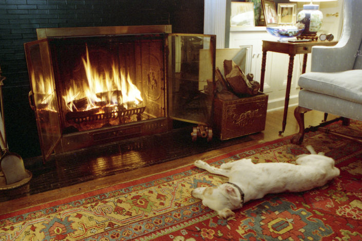 The Quayle's Canine: Chili, The Quayle's dog, warms up in front of the fireplace at Number One Observatory Circle, the official home and residence of the Vice President of the United States. Photographer: Steven Purcell. Text credit: Charles Denyer.